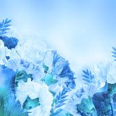 Tle kwiatów — Zdjęcie stockowe