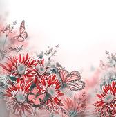 Frühling-chrysantheme mit schmetterlingen auf weiß — Stockfoto