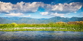 Lac inle — Photo