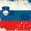 Grunge Slovenia flag — Stock Photo