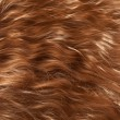 Hair Texture — Stock Photo