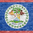 Grunge Belize flag  — Stock Photo