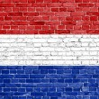 Grunge Netherlands flag — Stock Photo