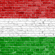 Grunge Hungary flag — Stock Photo