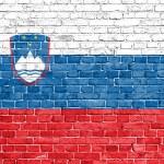 Grunge Slovenia flag  — Stock Photo #30684853