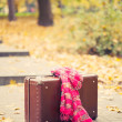 Stock Photo: Vintage suitcase with pink scarf on alley in autumn park