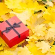 Red gift box with bow in yellow leaves — Stock Photo #34604795