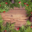Christmas tree branches with decoration — Stock Photo #34605031