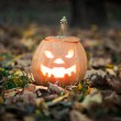 Stock Photo: Halloween jack-o-lantern