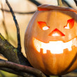 Halloween jack-o-lantern — Stock Photo