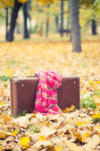 Vintage suitcase with pink scarf in autumn park — Stock Photo