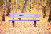Скамейка в Осенний парк — Стоковое фото