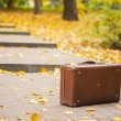 Vintage suitcase on alley in autumn park — Stock Photo