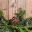 Christmas tree branches with bumps — Stock Photo #36514525