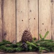 Christmas tree branches with bumps — Stock Photo #36514595