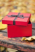 Red gift box with bow on bench in autumn park — Stock Photo