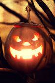 Halloween jack-o-lantern — Photo