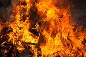 Blaze fire flame — Stock Photo