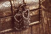 Earrings on chest — Stock Photo