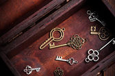 Vintage keys inside old treasure chest — ストック写真