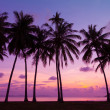 Tropical sunset over sea with palm trees, Thailand — Stock Photo #27195769