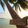 No trespassing sign on tropical palm tree at beach — Stock Photo