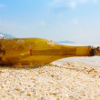 Bottle with a message on tropical shore — Foto de Stock