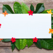 Summer leaves with flowers on wooden background with blank place for text — Stock Photo
