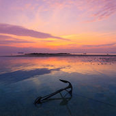 Sunset seascape, old anchor in water during ebb — Stock Photo
