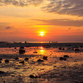Sunset over she sea during ebb — Stock Photo
