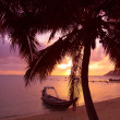 Small boat under the palm trees on tropical beach at sunset — Stock Photo