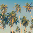 Vintage palm trees at tropical coast — Stock Photo #38841371