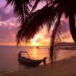 Stock Photo: Small boat under the palm trees on tropical beach at sunset
