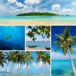 Beautiful collage of tropical images, beach, palm trees, small exotic island — Stock Photo #38841777