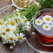 Chamomile tea — Stock Photo