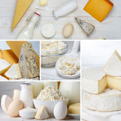 Dairy products collage — Stock fotografie