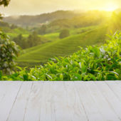 Empty wooden table with tea plantation — Stock Photo