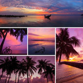 Beautiful collage of tropical sunset images, beach, palm trees at twilight — Stock Photo