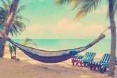 Hammock under palms trees — Stock Photo