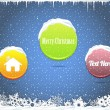 Set of Vector Button Banner Winter Web Elements — Stock Vector