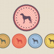 Vector Vintage Dog Icon Button and multicolored — Stock Vector #12657685