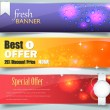Web Banner Template Vector Design — Vettoriale Stock #13126587