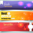 Web Banner Template Vector Design — Stock Vector