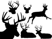 Deer silhouette set -2 — Stock Vector