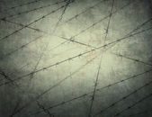 Prison. Jail. Illegal.Fence(texture, background) — Foto Stock