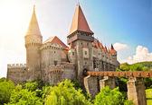 Mittelalterliche burg — Stockfoto