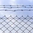 Barb wire fence and blue sky — Stok fotoğraf