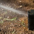 Sprinkler head — Stock Photo