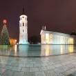 Vilnius cathedral at christmas night. Lithuania, Europe. — Stock Photo #12726208