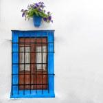 Window in Cordoba, Andalucia in Spain, Europe. — Stock Photo